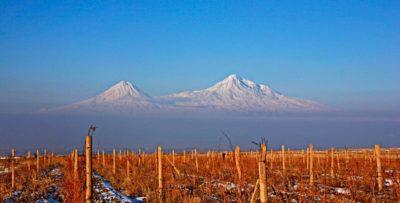 Armeense wijn