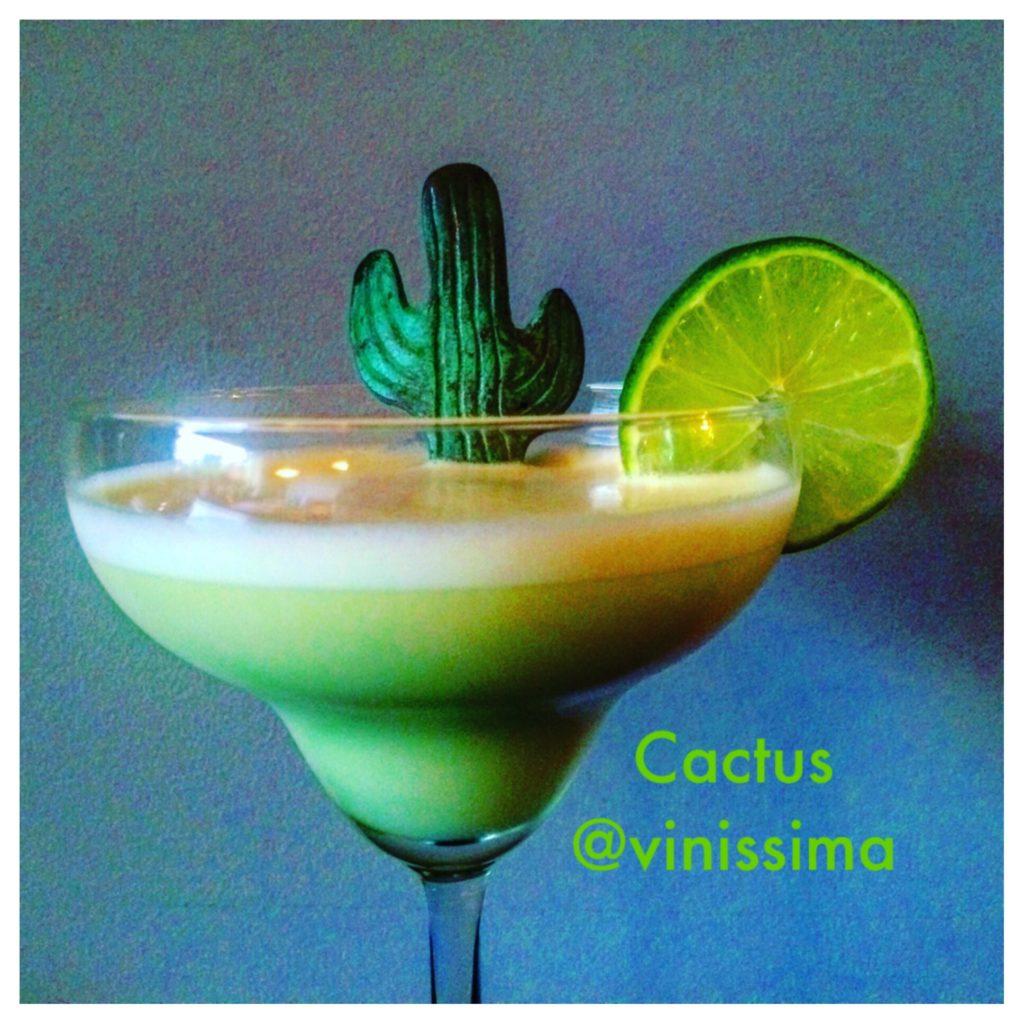 Cocktail Cactus