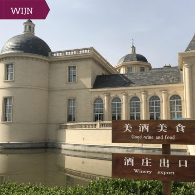 Ningxia Wine Tour