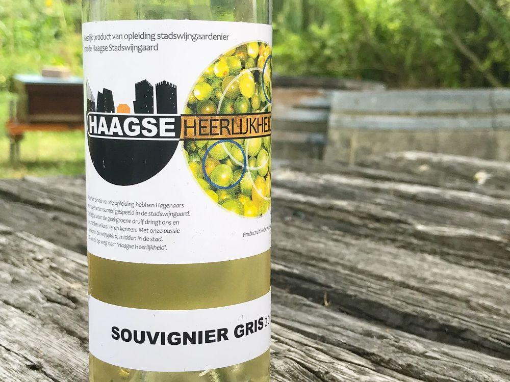 Haagse Heerlijkheid souvignier gris 2017