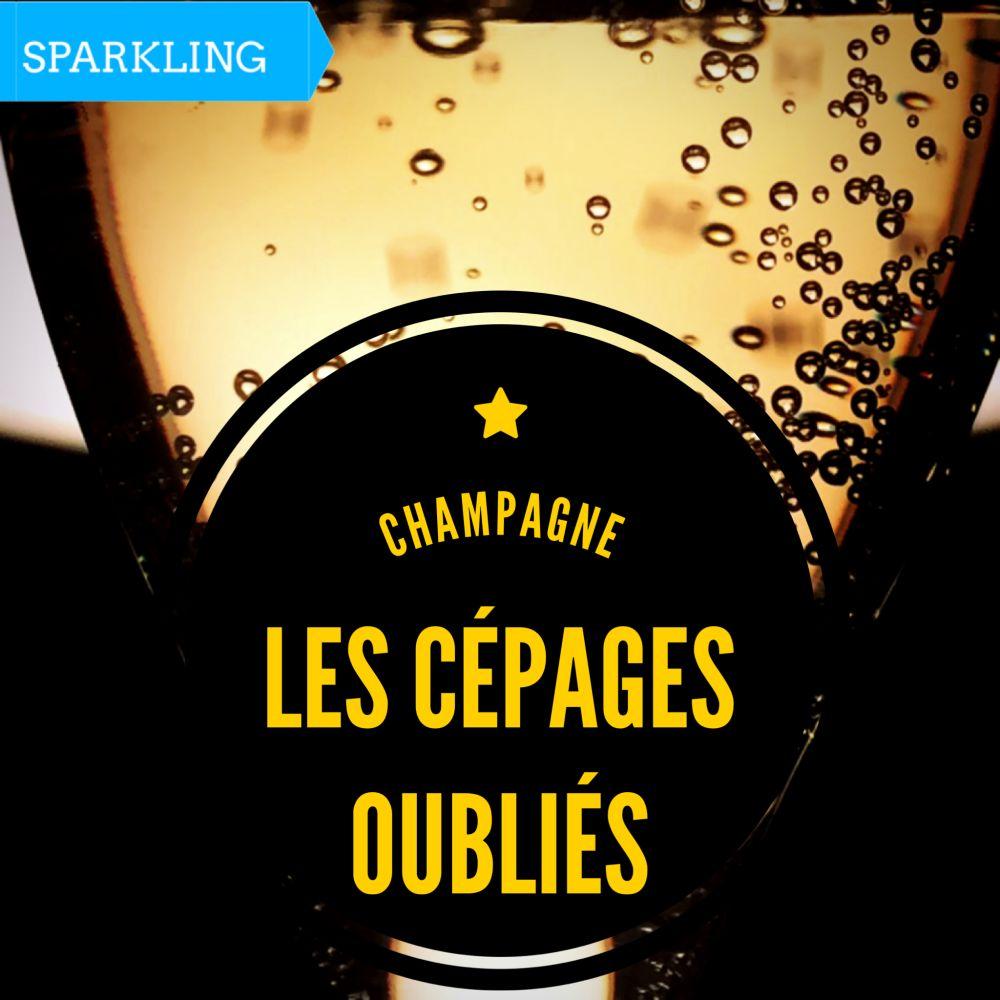Champagne - Les cépages oubliés