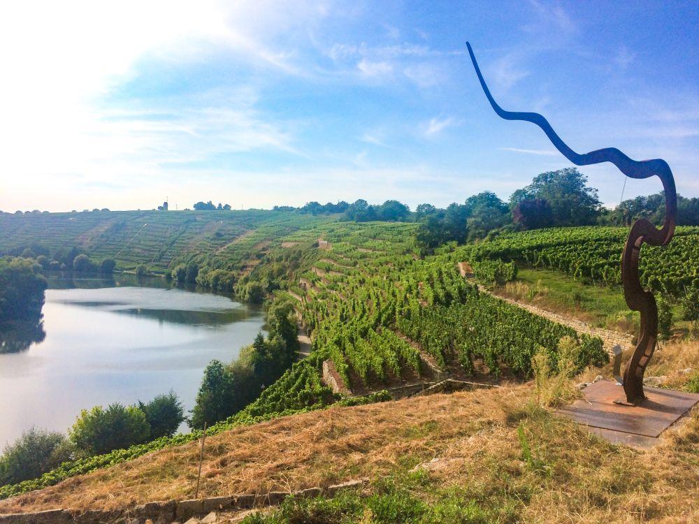 Weinterrasse Kirchheim am Neckar