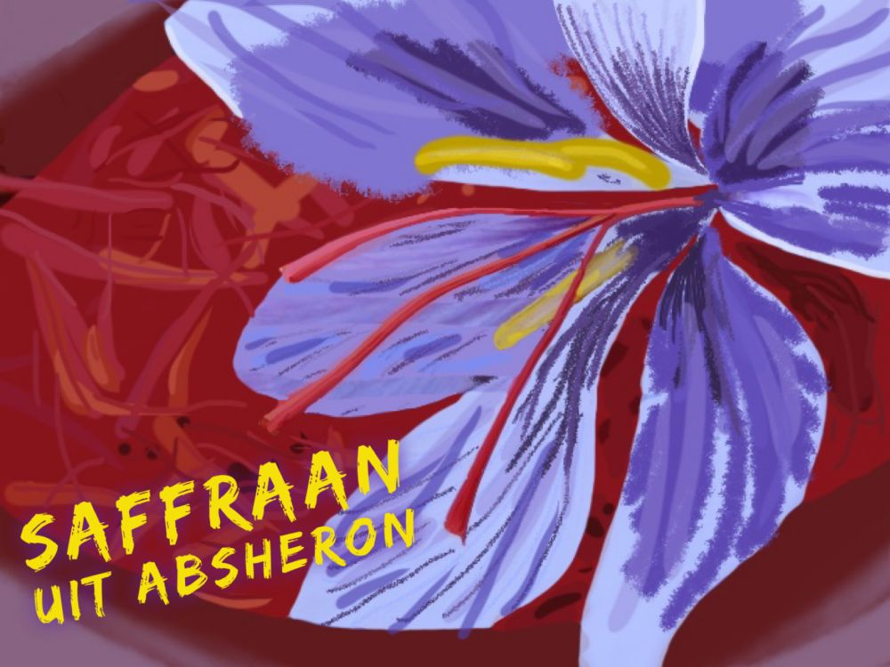 Saffraan uit Absheron